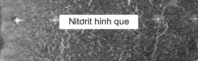 Công nghệ thấm nitơ cho khuôn mới và khuôn đùn ép nhôm hình đã qua sử dụng