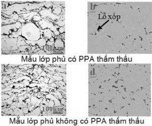 Hình 4. Ảnh hiển vi quang học mặt cắt ngang của các mẫu lớp phủ có và không có PPA thẩm thấu