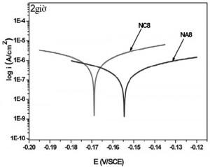 Hình 7. Đường cong phân cực của các mẫu đo sau thời gian thử nghiệm ăn mòn mài mòn 2 giờ