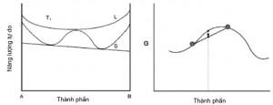 Hình 1. Đường cong năng lượng - thành phần hệ có phân rã spinodal
