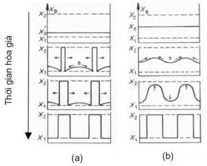 Hình 3. So sánh (a) chuyển pha thông thường và (b) phân rã spinodal [1]
