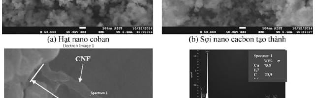 Nghiên cứu chế tạo sợi nano cacbon từ ethanol bằng công nghệ CVD sử dụng xúc tác hạt nano coban