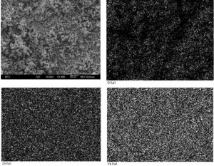 Fig. 2. SEM-EDX images of the mixtures milled for 50 h