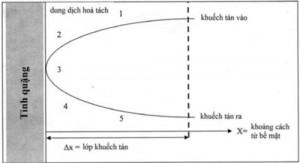 Hình 5. Động học phản ứng của chất rắn trongdung dịch [2]