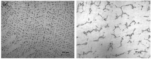 Hình 5. Ảnh hiển vi quang học của mẫu đúc chân không sau nhiệt luyện: độ phóng đại x100 (a)và độ phóng đại x500 (b)